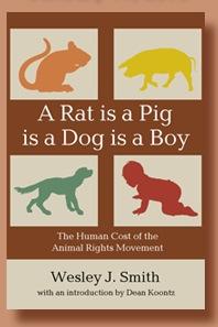 A Rat is a Pig